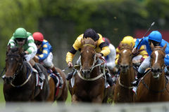 04 wyścigi Fotografia Stock