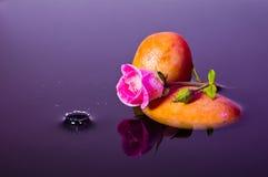 04852桃红色玫瑰飞溅水 免版税库存照片