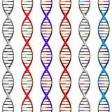 05个背景脱氧核糖核酸类型 库存例证