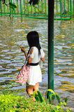 05曼谷11月人泰国 库存图片