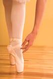 05芭蕾舞女演员 库存图片