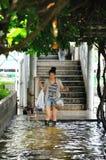 05 bangkok Таиланд -го ноябрь Стоковая Фотография