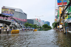 05 bangkok november thailand Arkivbild