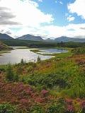 05 cairngorm park narodowy Obrazy Royalty Free