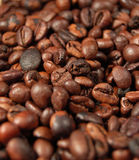 05 fasoli kawę Obrazy Stock