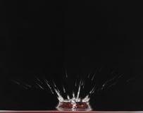 05 kropli wody. Fotografia Stock