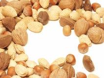 055 nuts Fotografia Royalty Free