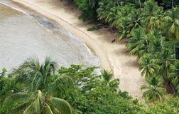 06 пляж caribbean Тобаго Стоковые Изображения RF