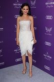 06 09 12 2012 Angeles balowych motyla ca chryzalidy kucharza Leigh lokacj los intymny Rachael Fotografia Royalty Free
