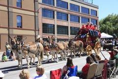 06 12 2010 парадов portland Орегона празднества подняли Стоковые Фото