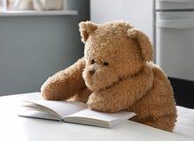 06熊 免版税库存照片