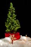 06 bożych narodzeń świąteczny nastrój ornamentuje drzewa Zdjęcia Royalty Free