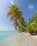 07海滩加勒比多巴哥 图库摄影