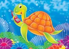 07礁石 免版税库存照片