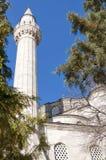 07 camii meczetowy pasa sokullu Fotografia Royalty Free