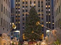 07 rc drzewo Zdjęcia Royalty Free