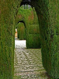 08 alhambra granada Стоковое Изображение RF