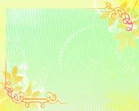 ανασκόπηση 08 floral Στοκ Εικόνα