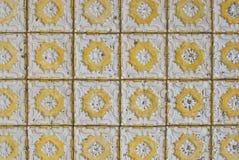 083 glasade portugisiska tegelplattor Royaltyfria Bilder