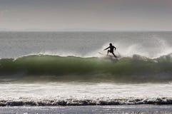 09 занимаясь серфингом Стоковые Изображения RF