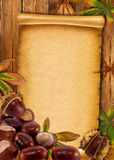0ld document achtergrond met de herfstkastanjes Stock Afbeeldingen