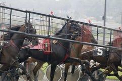 1上马具的赛马比赛 免版税库存图片