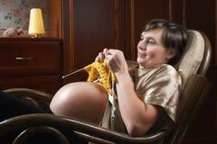 1个企业母亲 免版税库存图片