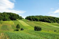 1个克罗地亚农场 免版税库存图片