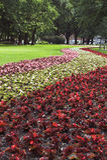 1个公园夏天 免版税库存图片