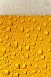 1个啤酒特写镜头 库存照片