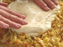 1个圆白菜饼 库存照片