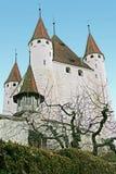 1个城堡瑞士 库存图片
