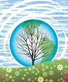 1个天地球结构树 库存照片