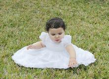 1个婴孩草讲西班牙语的美国人 图库摄影