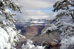 1个峡谷全部冬天 图库摄影