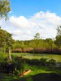 1个湖用茅草盖视图 免版税库存照片