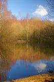 1个湖 库存照片