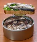 1个爱沙尼亚语国家三明治 免版税库存图片