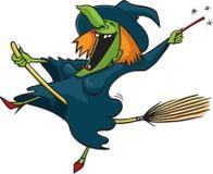 1个疯狂的巫婆 库存图片
