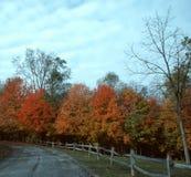 1个秋天驱动器 免版税图库摄影
