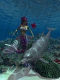 1个美人鱼 库存图片