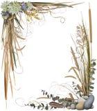 1个花卉框架 免版税库存照片