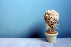 1个花盆 库存图片