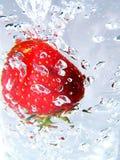 1个草莓 免版税库存照片