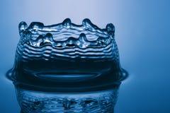1个蓝色冠 免版税图库摄影
