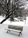 1个长凳冬天 库存图片