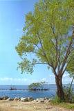 1个biscayne国家公园 免版税库存图片