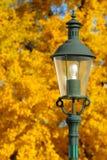 1个grafenegg灯笼没有公园 库存照片