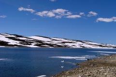 1个hardangervidda高原 免版税库存照片
