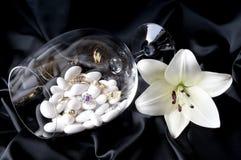 1件珠宝 免版税库存照片